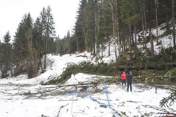 Oberstdorfissa myrsky kaatoi metsää ladulle.