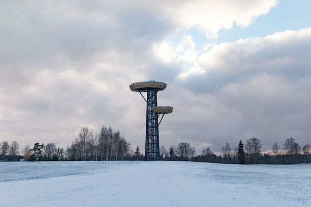 Rõugen Pesäpuu-torni on kuin puu, jossa on kaksi linnunpesää.