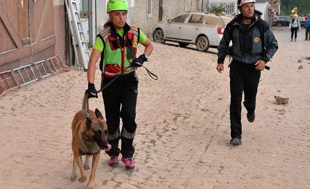 Tutkimustuloksista voi olla paljon apua esimerkiksi palveluskoirien kouluttamiseen.