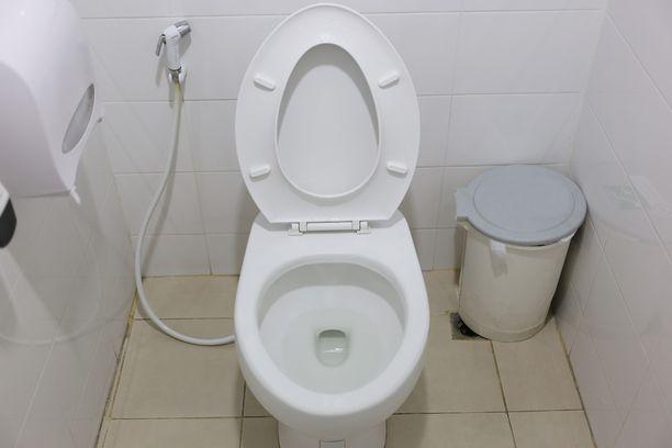 Vessanpytystä voi vetää alas huuhteluvettä, wc-paperia ja sitä itseään.