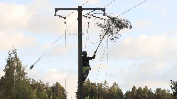 Pahimmillaan myrskyn takia Paraisilla oli ilman sähköä noin 5000 Caruna Oy:n asiakasta. Suurin osa sähköistä saatiin palautettua torstain aikana.