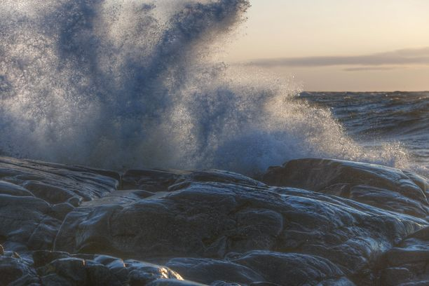 Raju talvimyrsky koitui merellä kahden ravihevosen kohtaloksi.