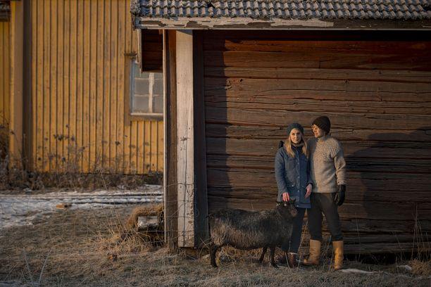 Janne antoi Annalle häiden jälkeen huomenlahjaksi lampaan, jonka nimi on Susi.