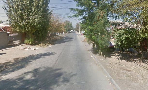 Googlen auton lähestyessä koira alkaa ylittää tietä.