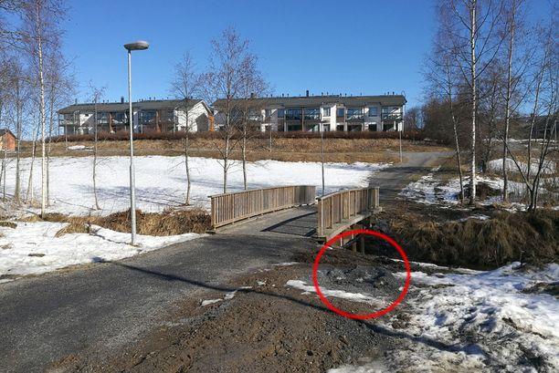 Löytöpaikka sijaitsee ulkoilutien sillan vieressä lähellä lasten suosimaa pulkkarinnettä.