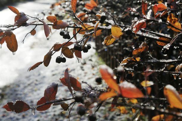 Maanantaiaamuna saadaan vesi-, räntä- ja lumisateita koko maassa.