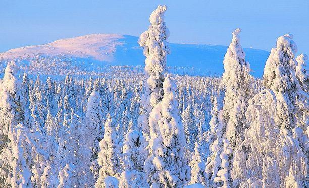 Lämpötila saattaa Itä- ja Pohjois-Suomessa nousta tällä viikolla jopa 30 astetta.