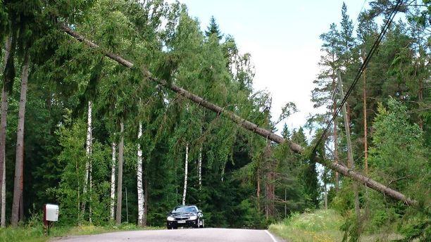 Myrskytuuli kaatoi puita Nurmijärvellä kesällä 2017.