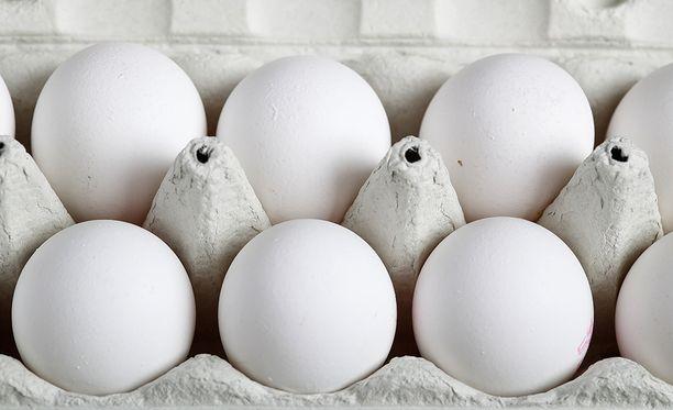 Hyönteismyrkkyä sisältäviä munia on myyty myös Tanskassa. Kuvituskuva.