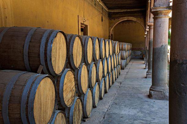 Haciandan tiloissa säilytetään tynnyrejä, joissa kypsyy agaavekaktuksesta tehtyä mescal-viinaa.