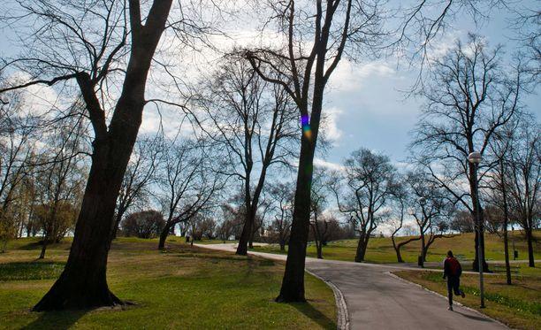 Aurinkoinen lauantai on saanut lenkkeilijät sankoin joukoin nauttimaan keväisestä säästä. Ja taitaapa illemmalla muutama grillikin pihistä.