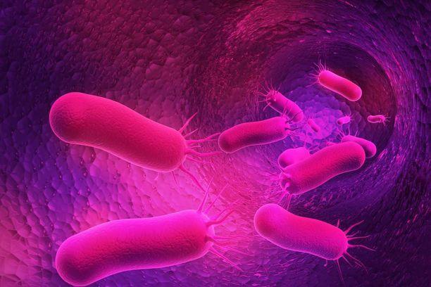 Superbakteerigeeni on nyt löytynyt ensimmäistä kertaa ihmisen elimistöstä.