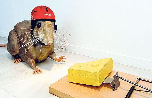 """TURVAROTTA Siimahäntä on selvästi käsittänyt, ettei turvallisuus ole sivuseikka. """"Safety Rat"""" -taideteos oli esillä Palmas de Gran Canarian CAAM-taidemuseossa."""