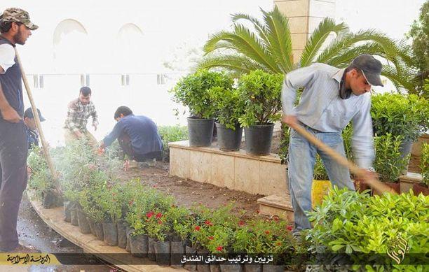 Isisin propagandakuvissa puutarhurit ehostavat hotellin puutarhaa.
