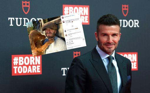 David Beckham lähes tunnistamattomana - julkaisi itsestään erilaisen kuvan