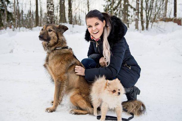 Perheessä on kaksi koiraa.