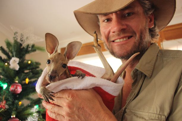 Chris Barns on lempinimeltään Kangaroo Dundee. Sadat pulaan joutuneet kengurut ovat saaneet suojan hänen perustamassaan turvakodissa