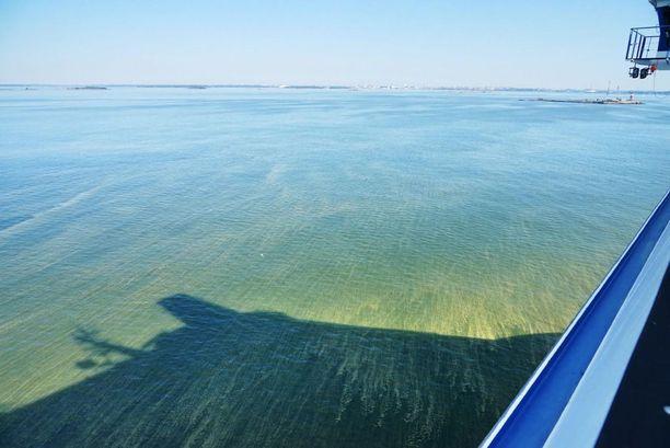 Levälautat ulottuvat avomerelle kauas Suomen rannikosta. Kuva on otettu risteilyalukselta sunnuntaiaamuna, Helsinki näkyy horisontissa.