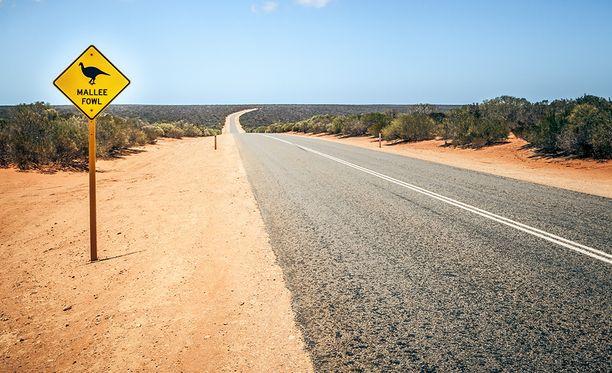 Reitti olisi kulkenut valtavien autiomaiden läpi.