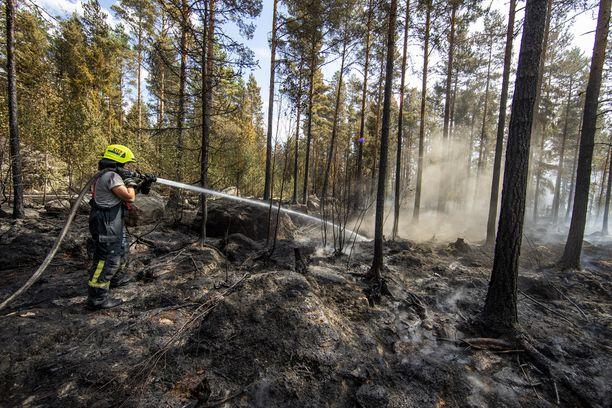 Varsinais-Suomen pelastuslaitos on saanut rajattua tulipalon noin 100 hehtaarin alueelle.