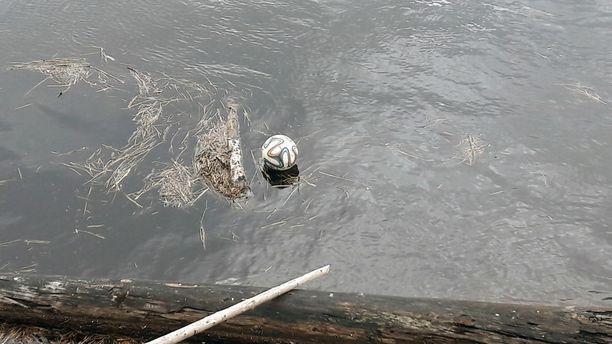 Harju ohjasi pallon rantaan kepin avulla.