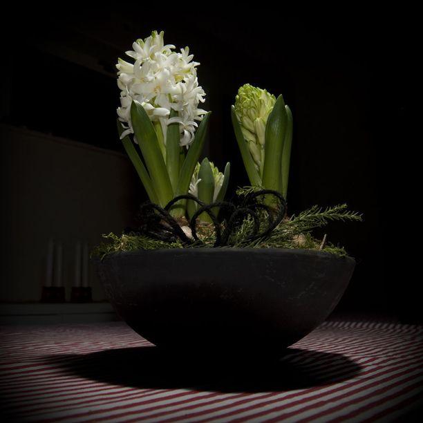 Valkoisilla kukilla saa pimeimpäänkin nurkkaan vaaleaa hohdetta.