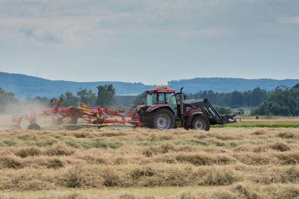 Moni viljelijä painii talousongelmien kanssa. Syksyn surkea sato on ajamassa monia viljelijöitä entistä ahtaammalle. Kuvituskuva.