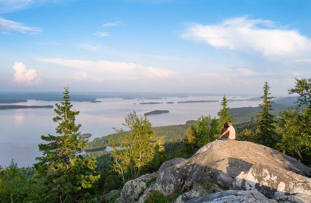 Komeista maisemista tunnettu Koli kuuluu Suomen suosituimpiin kansallispuistoihin.