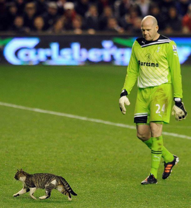 Tottenhamin maalivahti Brad Friedel katseli vierestä, kun kissa kirmasi Anfieldillä.