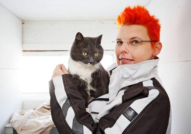 Löytöeläinkodin työntekijä esittelee Zelda-kissaa.