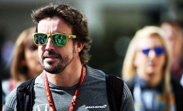 Fernando Alonso mittaa taitojaan autourheilun eri luokissa.