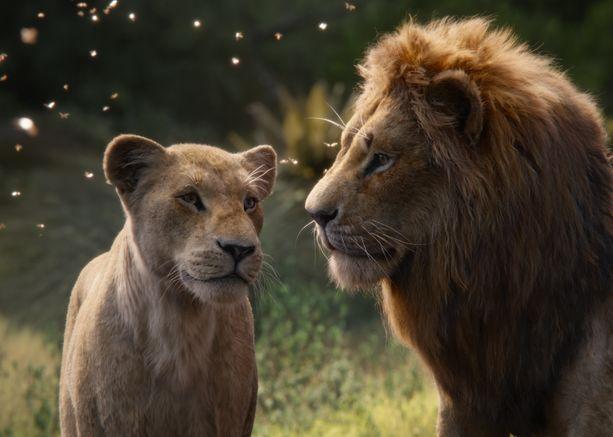 Nala ja Simba rakastuvat aikuisiällä.