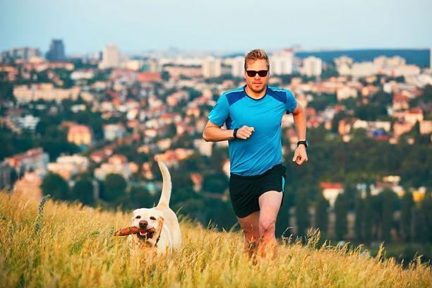 Koiraihminen työskentelee kissaihmistä todennäköisemmin finanssialalla ja harrastaa kuntoilua. Koirat ovat omiaan lisäämään omistajiensa liikunnan määrää.