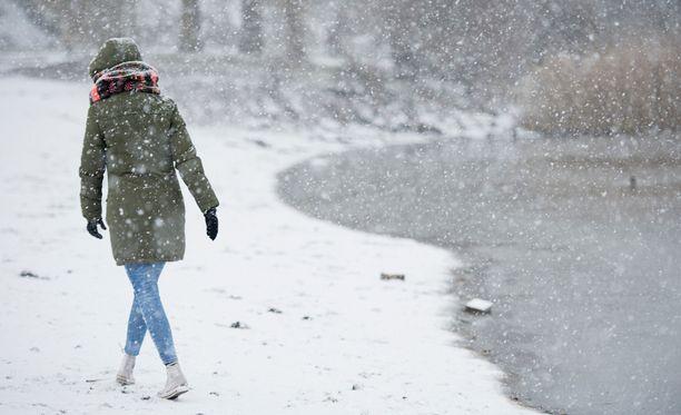 Lämpimänä alkanut aikainen kevät perääntyy toistaiseksi lumisateiden myötä.