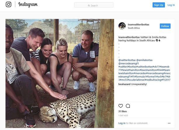 Valtteri ja Emilia Bottas lomailevat parhaillaan Etelä-Afrikassa.