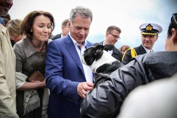 Teppo-koira sai presidentiltä rapsutukset.