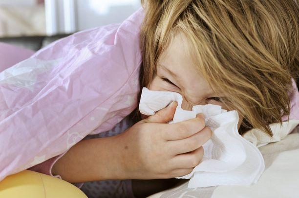 Influenssakausi on alkamassa.