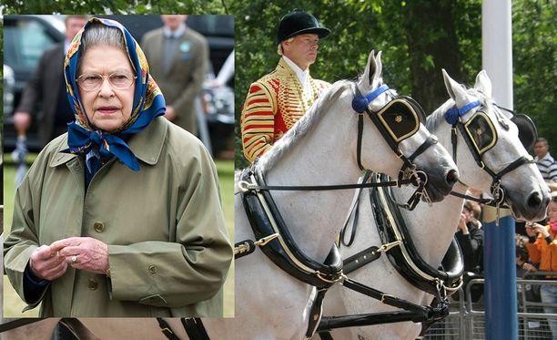 Kuningatar Elisabetin luottohevonen PH Keston on kuollut.