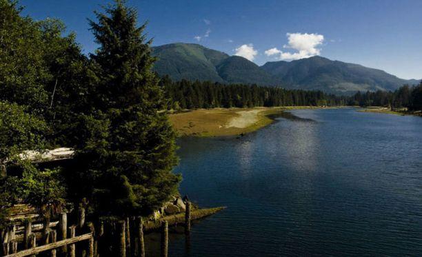 Jalkoja on löytynyt muun muassa Vancouverin saaren rannikolta.