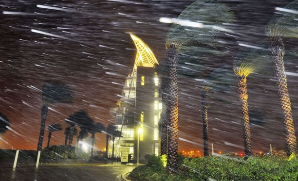 Puut ovat koetuksella Cape Canaveralin avaruuskeskuksessa Floridassa.