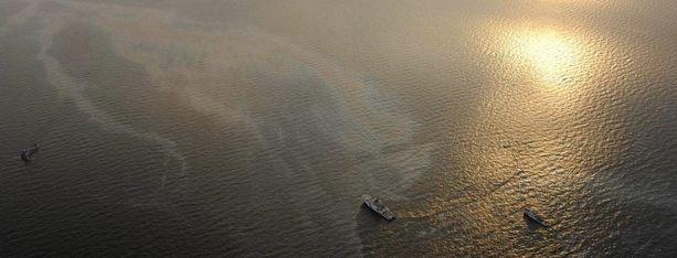 Öljypäästö olisi voinut aiheuttaa vakavaa vaaraa merellisen luonnon monimuotoisuudelle.