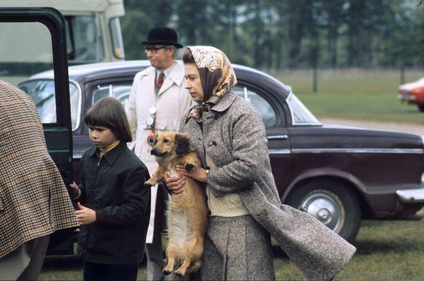 Kuningatar on viihtynyt Balmoralissa koiriensa kanssa.