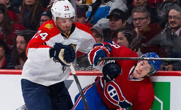 Shane O'Brienilla on 537 ottelun kokemus NHL:stä.
