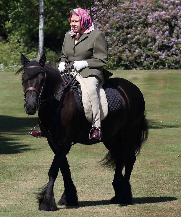 Toukokuussa kuningatar Elisabet nousi 14-vuotiaan fellponi Balmoral Fernin selkään.