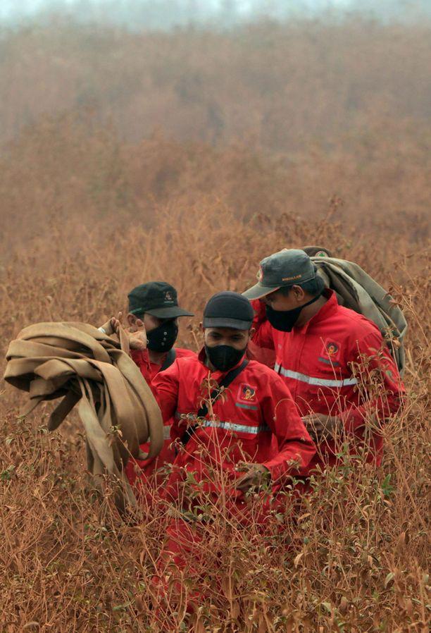 22 000 miestä on sammuttamassa paloja.