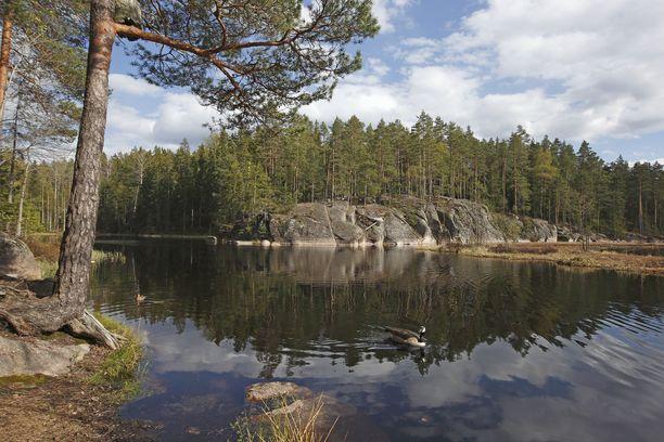 Nuuksion maasto on monipuolista. Uiminen on sallittu kaikissa puiston järvissä ja lammissa.