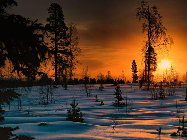 Joulupukin elämysluolan Santapark Oy:n toimitusjohtaja Ilkka Länkinen kertoo, että Lapissa on ollut viime päivinä elämyksellisiä auringonlaskuja ja -nousuja. Lunta ei kuitenkaan ole. Kuvituskuva.