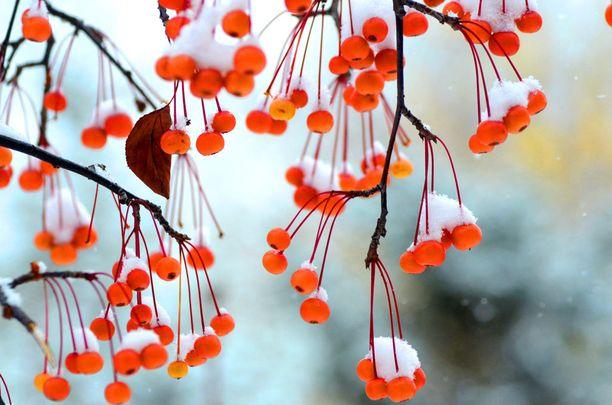 Lunta Kiinan Yiyanissa.