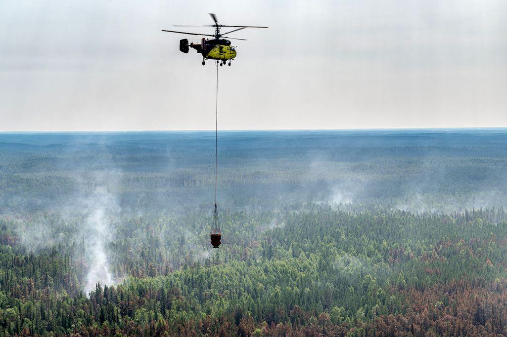 Siperiassa on ollut poikkeuksellisen lämmin tänä vuonna, ja alueella on jouduttu sammuttamaan myös metsäpaloja.