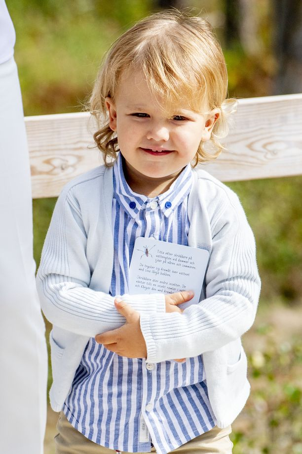 Alexanderilla oli hymy herkässä.